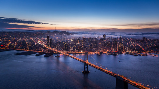 What Should You Do When Life Brings You To San Francisco?