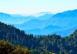 Chopta - The Little Known Paradise In Uttarakhand