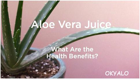 Top 10 Reasons To Drink Aloe Vera Juice