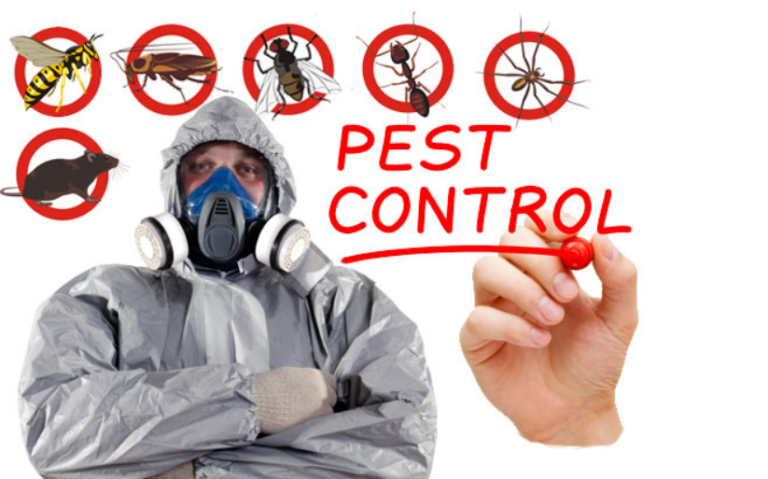 Pest Controller Service Providers' Unmatched Services For The Society