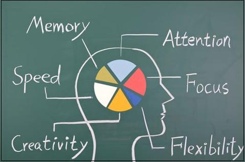 Great Utility Of Modafinil At Every Step Now